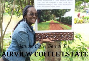 FAIRVIEW COFFEE - Agritour Coffee Date - Beads Safaris Collection
