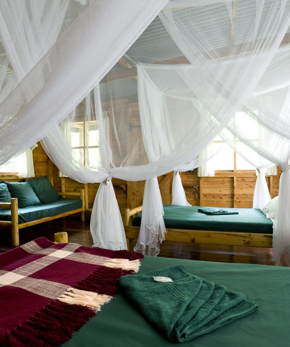 Budongo Eco Lodge - 19 - Twin room