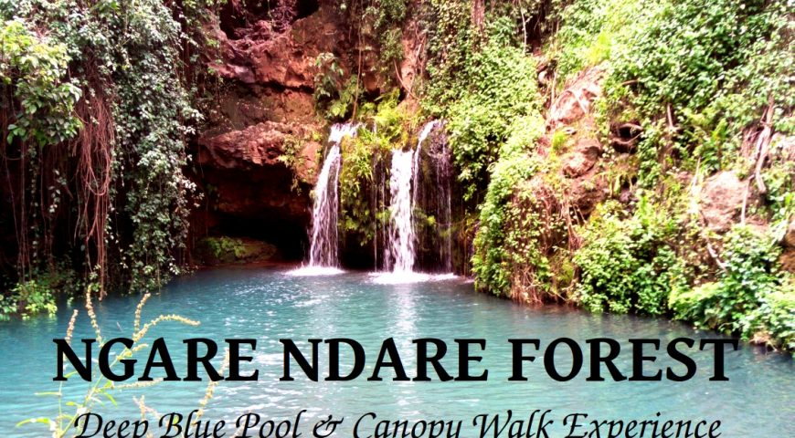 Ngare Ndare Blog Cover PIC