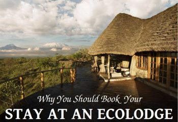 Beads_Safaris_Collection_Book your Stay at an Ecolodge