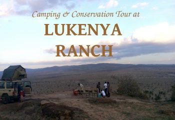 Beads Safaris Collection - Camping & Conservation Tour at Lukenya Ranch